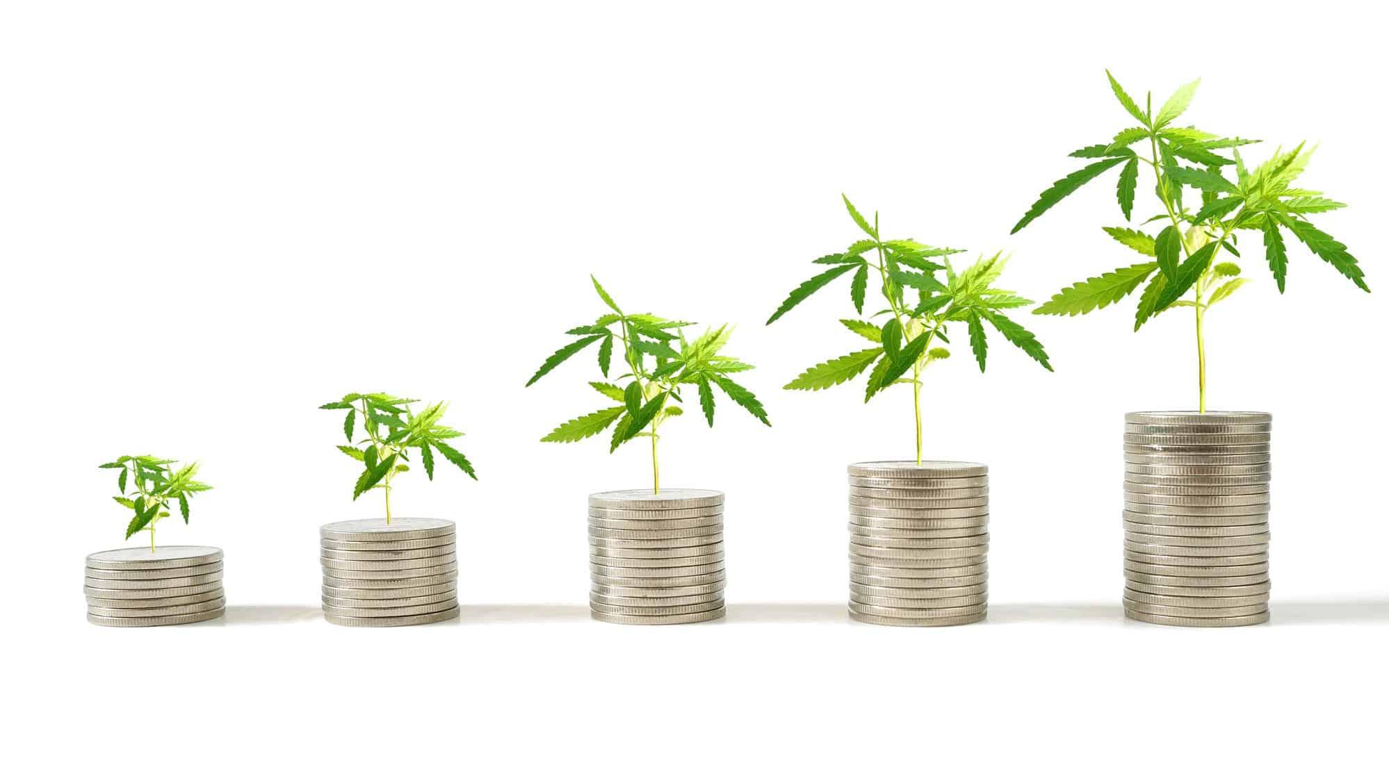 Cannabis-stocks-growth