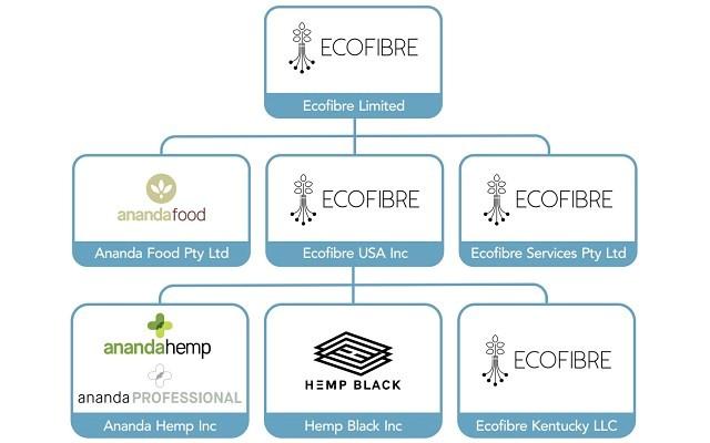 Ecofibre - Report