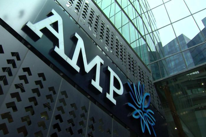 amp-business